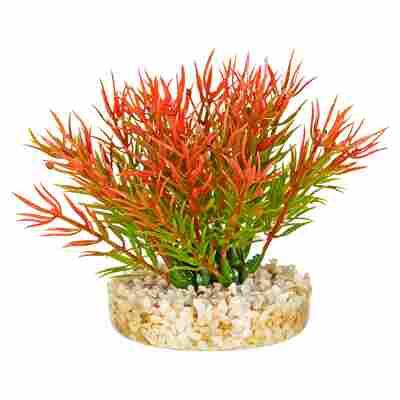"Aquarienpflanze ""Moos"" Kunststoff 9 cm"