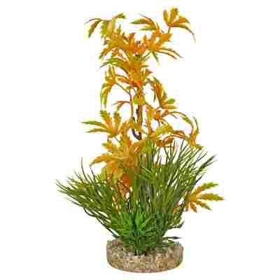Wasserpflanze 22 cm