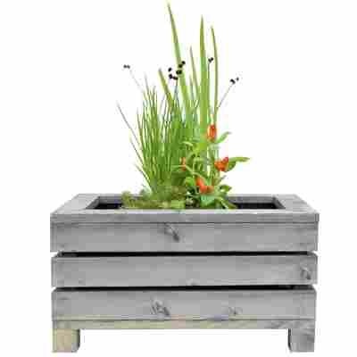 Miniteich-Set mit 4 Pflanzen und Teichkiste grau 45 x 32 x 21 cm