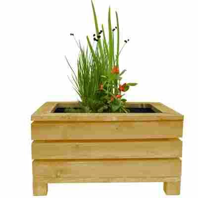 Miniteich-Set mit 4 Pflanzen und Teichkiste natur 45 x 32 x 21 cm