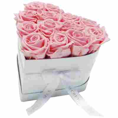 Rosenbox 'Herz' weiß mit 10-12 haltbaren rosa Rosen