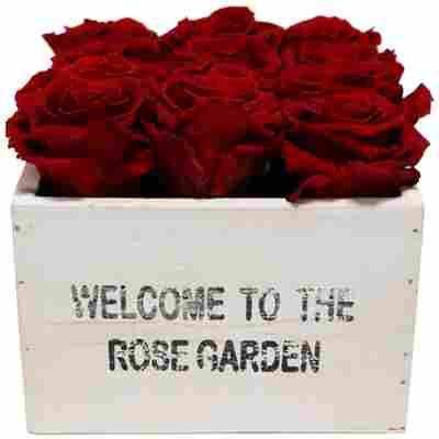 Rosenbox 'Rose Garden' weiß mit 12 haltbaren roten Rosen