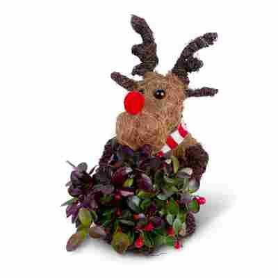 Dekofigur 'Weihnachts-Rentier' mit Scheinbeere, sitzend