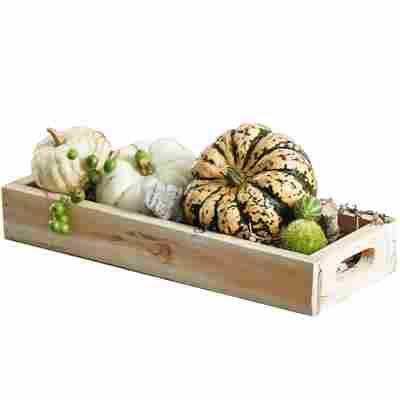 Zierkürbisse auf Holztablett mit Deko 34 cm