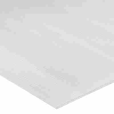 PC-Hohlkammerplatte transparent 200 x 105 x 1 cm