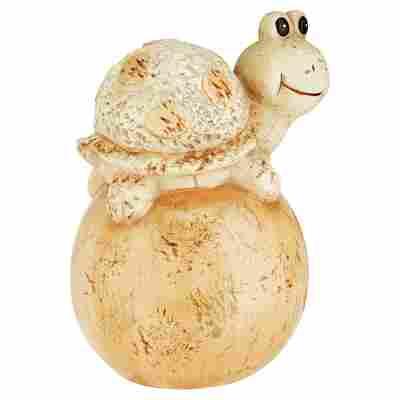 Gartenfigur Schildkröte auf Ball 16 x 25 x 19 cm