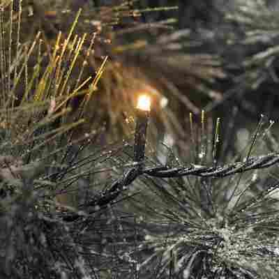 LED Lichterkette 400 Bernstein Dioden