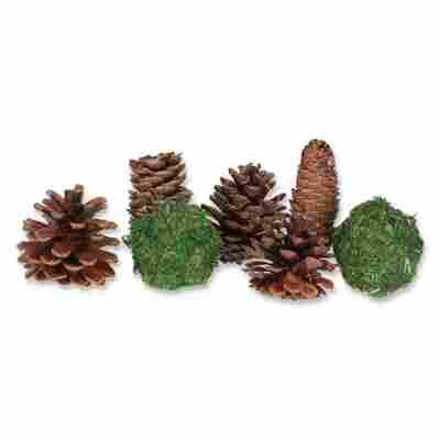 Potpourri-Zapfen gemischt braun-grün 90 g