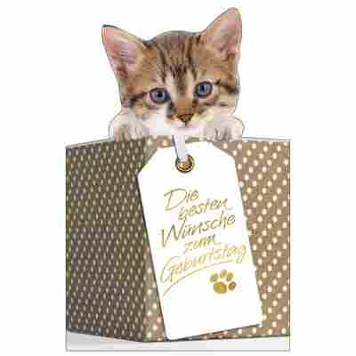 Grußkarte Geburtstag 'Katze im Korb'