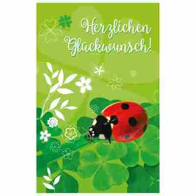 Grußkarte Glückwunsch 'Marienkäfer'