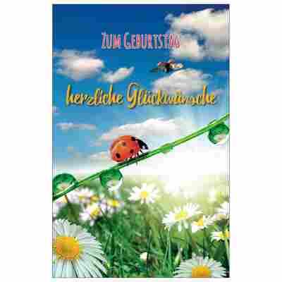 Grußkarte Geburtstag 'Käfer im Glück'