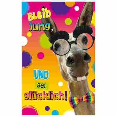 Grußkarte Geburtstag Humor 'Crazy Muli'