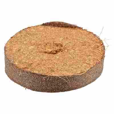 Quelltabletten Kokos torffrei, 50 Stück