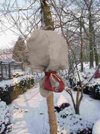 Winterschutz Jutesack 110 x 60 cm grau