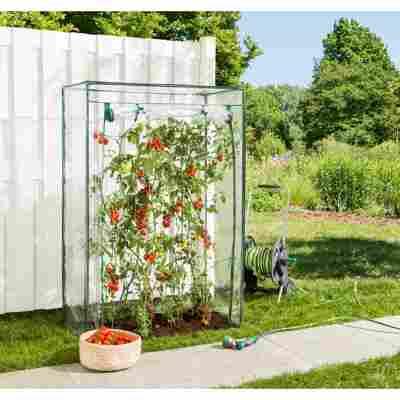 Tomatengewächshaus transparent 100 x 150 x 50 cm