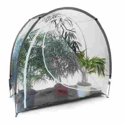 Frostschutz-Haus 'Ice' transparent 85 x 185 x 175 cm