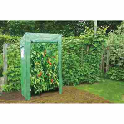 Tomatengewächshaus grün 100 x 169 x 60 cm
