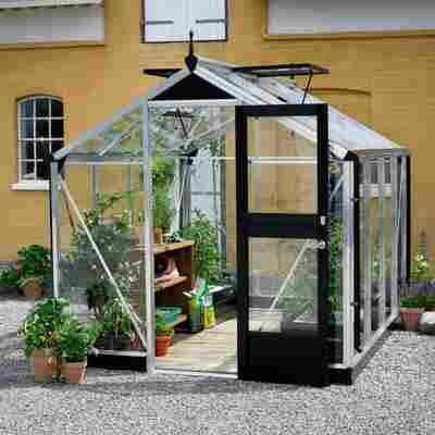 Gewächshaus 'Compact' 3 mm aluminiumfarben/schwarz 224 x 296 cm