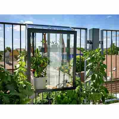 Balkon-Gewächshaus 'Urban Balcony' schwarz 60 x 27 x 79 cm
