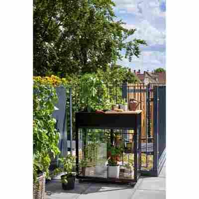 Hochbeet mit Mini-Gewächshaus 'Urban Vertical' schwarz 71 x 33 x 142 cm