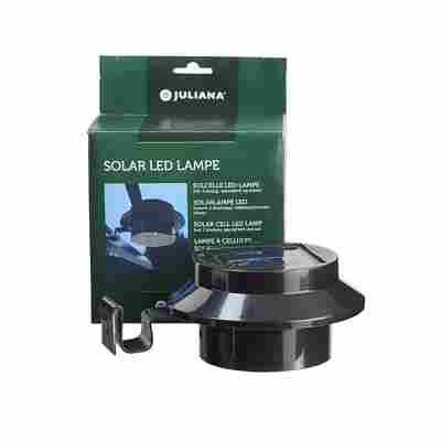 LED-Solar-Lampe für Gewächshäuser schwarz