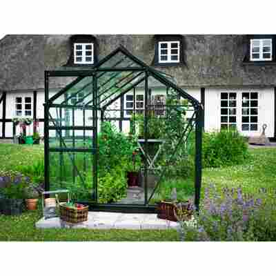 Gewächshaus 'Popular 106' 6,2 m² Blankglas 3 mm grün