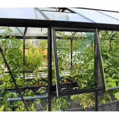 Seitenfenster für Gewächshaus 'Zeus/Comfort/Fortuna' schwarz, ohne Verglasung