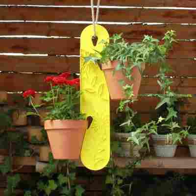 Blumenampel 'Zitrone' gelb 10 x 1,8 x 50 cm