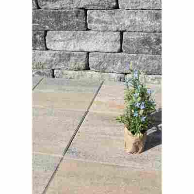 Gartenplatte 40 x 40 x 5 cm muschelkalk