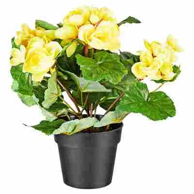 Kunstblume Begonie gelb/grün 26 cm
