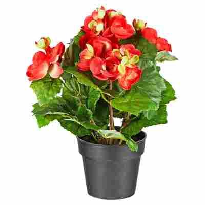Kunstblume Begonie rot/grün 26 cm