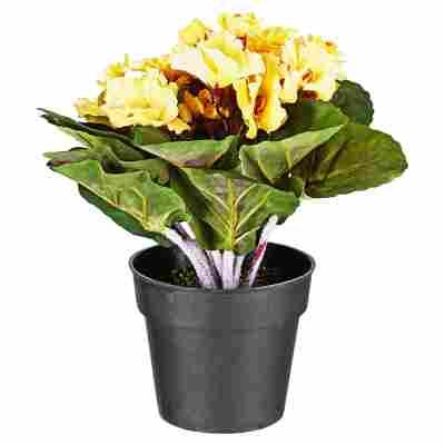 Kunstblume Usambaraveilchen gelb 24 cm