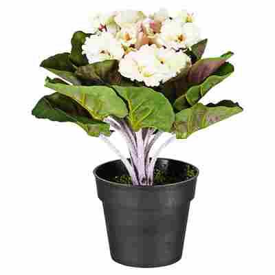 Kunstblume Usambaraveilchen weiß 24 cm