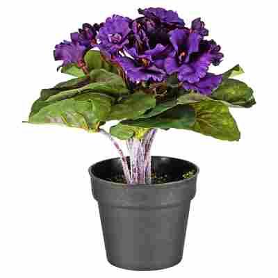 Kunstblume Usambaraveilchen violett 24 cm