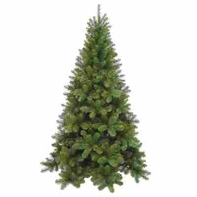 Weihnachtsbaum 'Tuscan' grün 260 cm