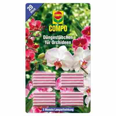 Düngestäbchen für Orchideen, 20 Stück