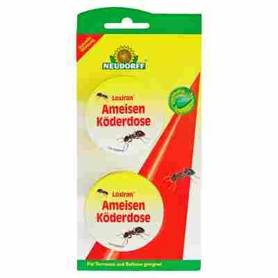 Loxiran Ameisenköderdose 2 Stück