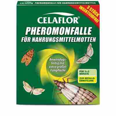 Pheromonfallen für Nahrungsmittelmotten 3 Stück
