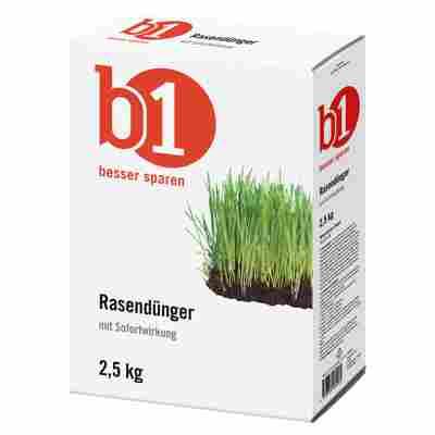 Rasendünger 2,5 kg für 100 m²