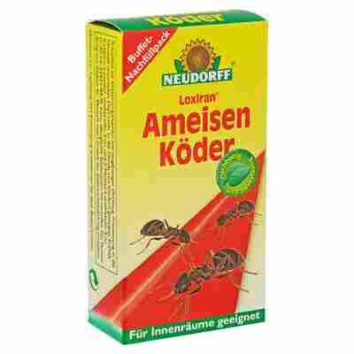 Loxiran Ameisenköder 2 x 20 ml