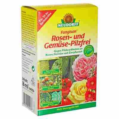 Fungisan Rosen- und Gemüse-Pilzfrei 16 ml