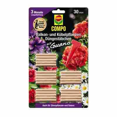Düngestäbchen für Balkon- und Kübelpflanzen 30 Stück