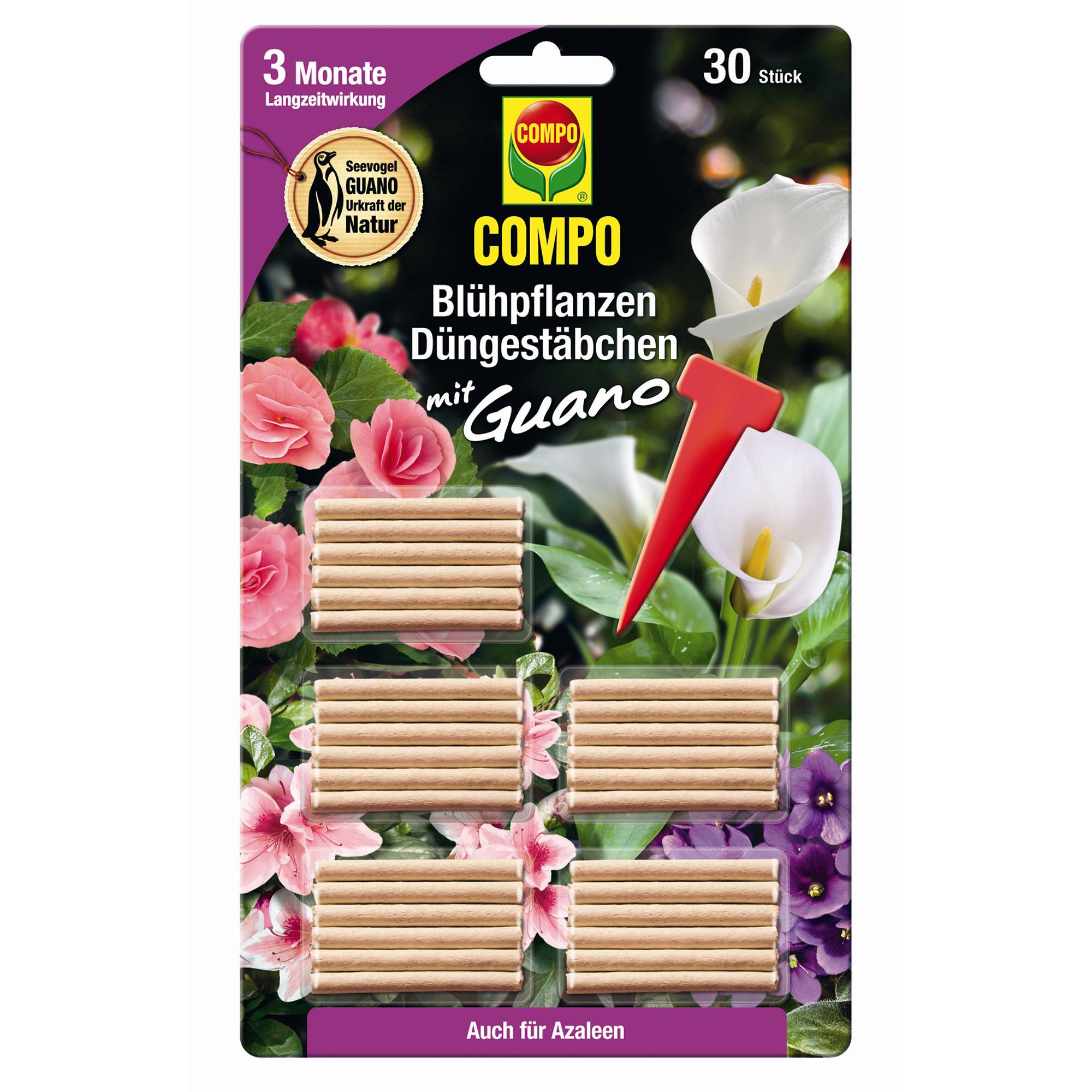 Compo Düngestäbchen für Blühpflanzen 30 Stück