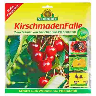 Kirschmaden-Falle 7 Stück