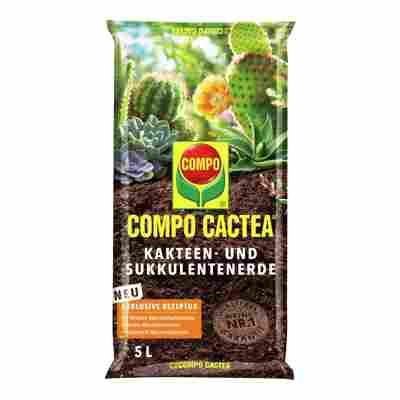 Compo Cactea® Kakteen- und Sukkulentenerde 5 l