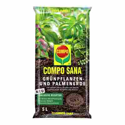 Compo Sana® Grünpflanzen- und Palmenerde 5 l