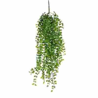 Kunstpflanze Ficus hängend 81 cm