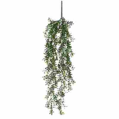 Kunstpflanze Buchsbaum hängend 74 cm