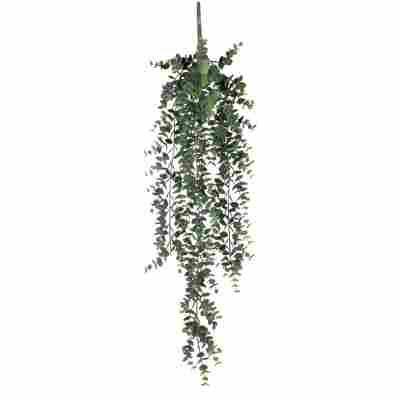 Kunstpflanze Eukalyptus hängend 78 cm