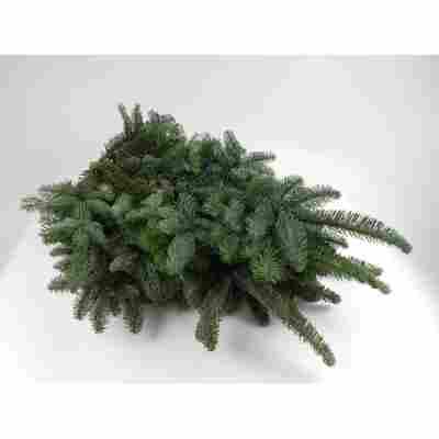 Tannengrün, Handbund Nobilistanne 5 kg